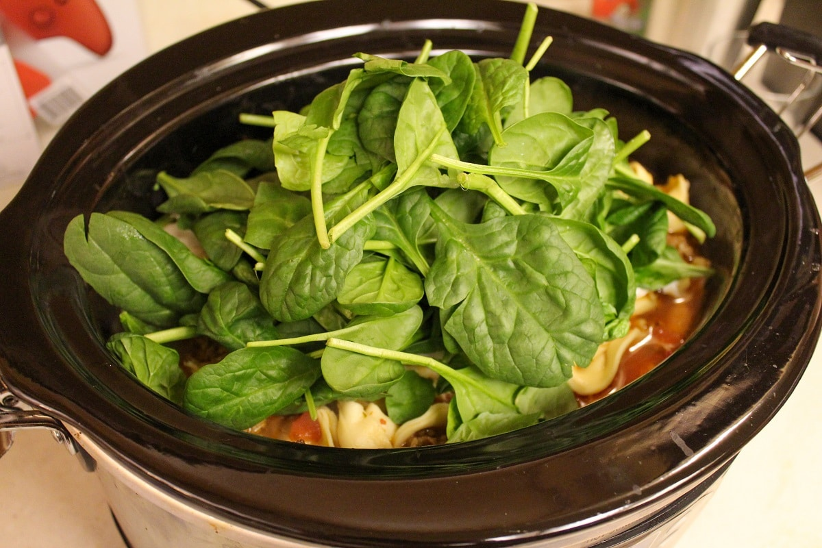 slow cooker with spinach