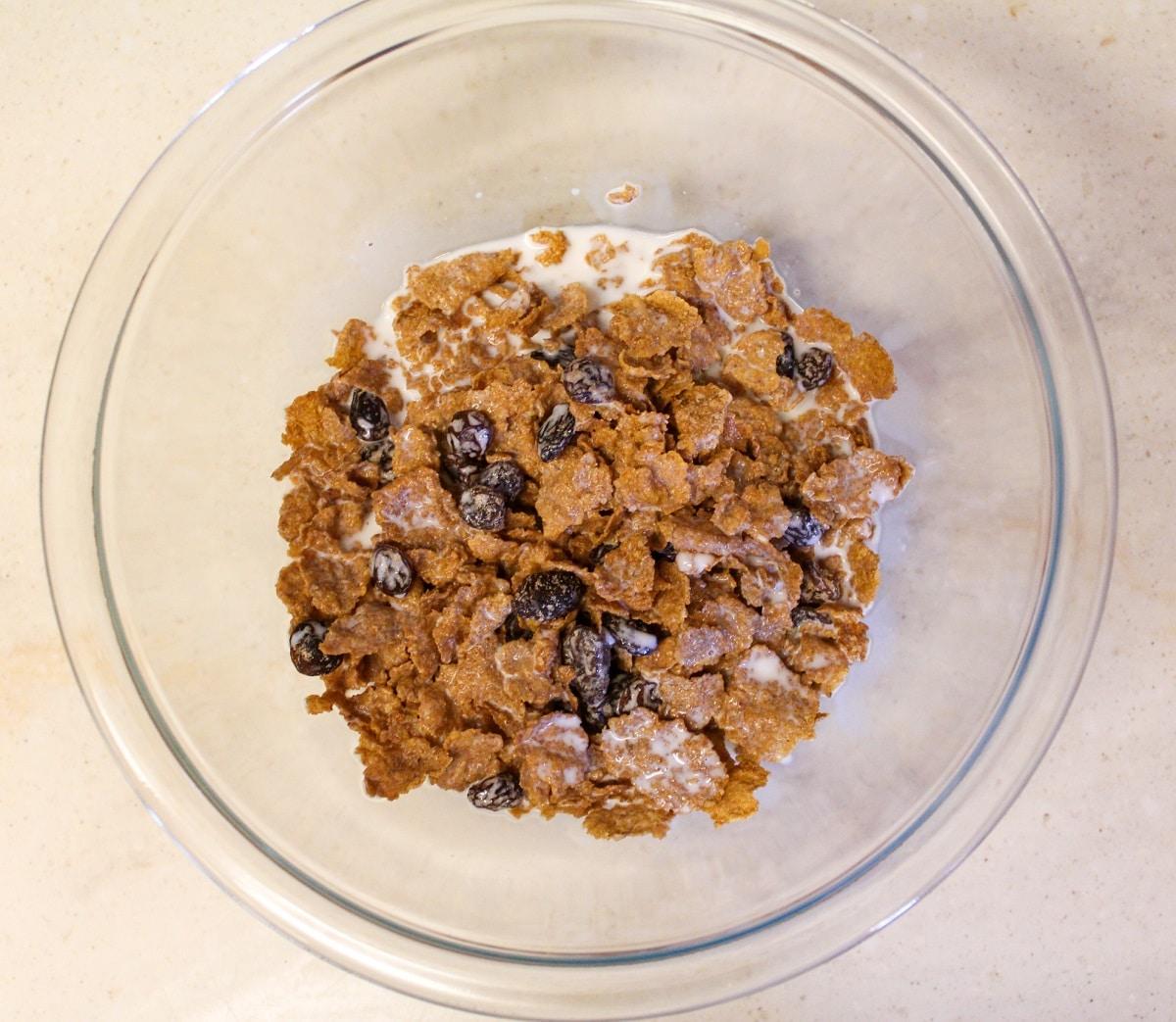 raisin bran with milk