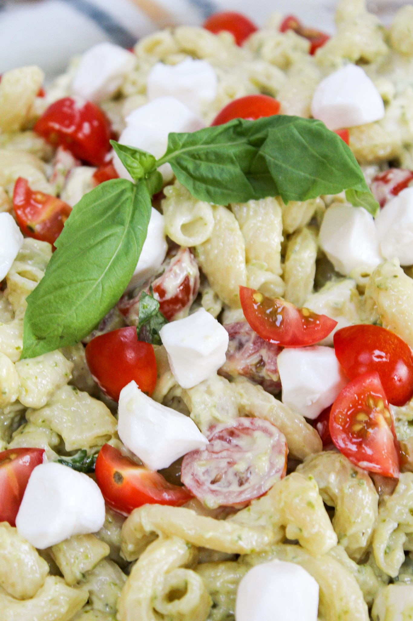 close-up picture of pasta salad with basil leaves
