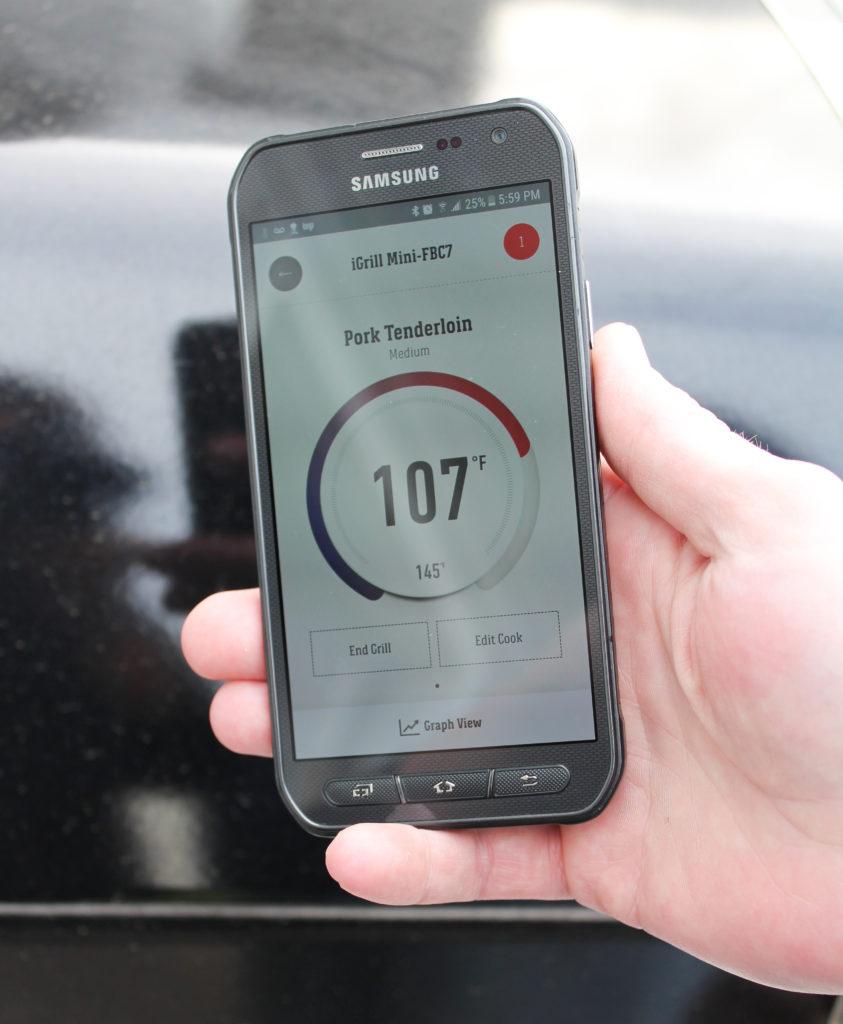 temperature thermometer demo