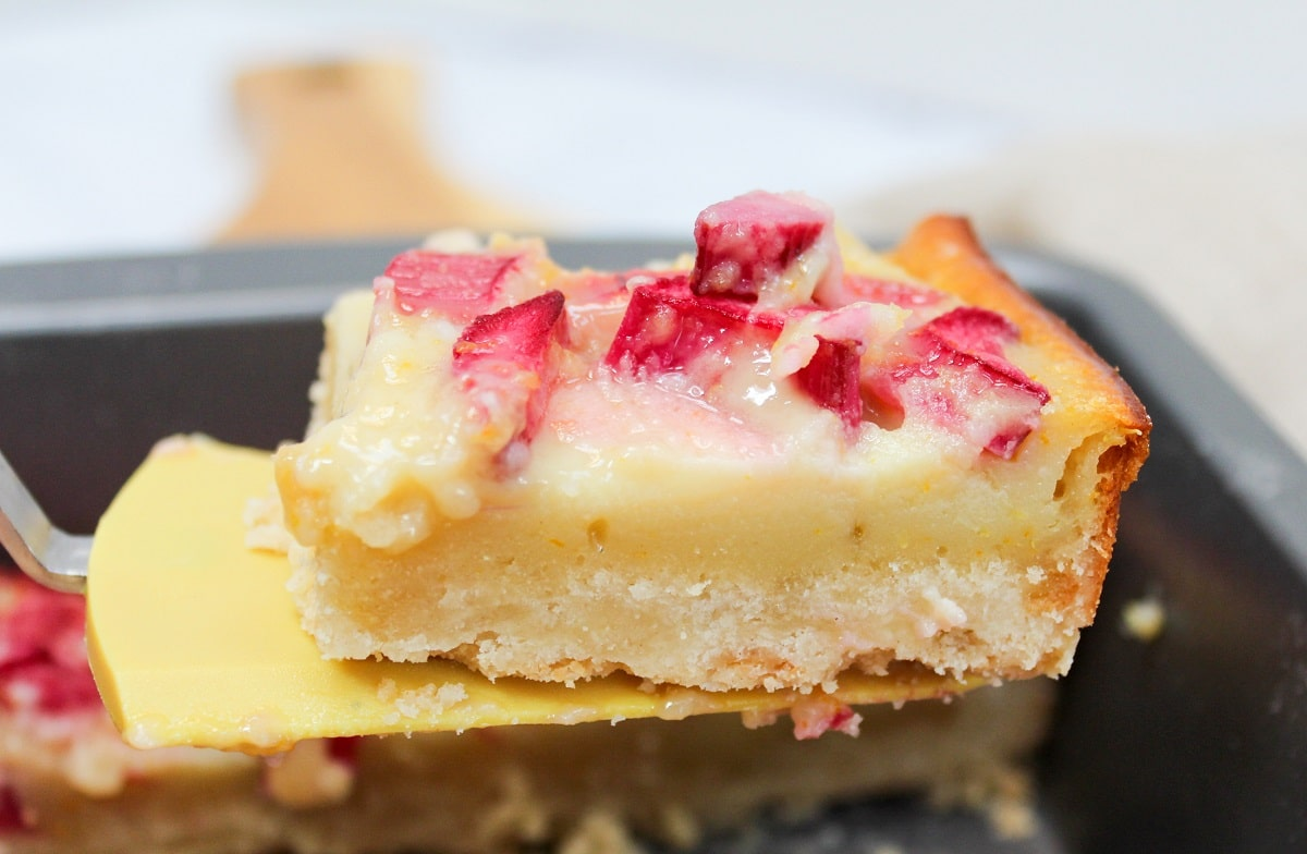 citrus rhubarb custard bars on a spatula