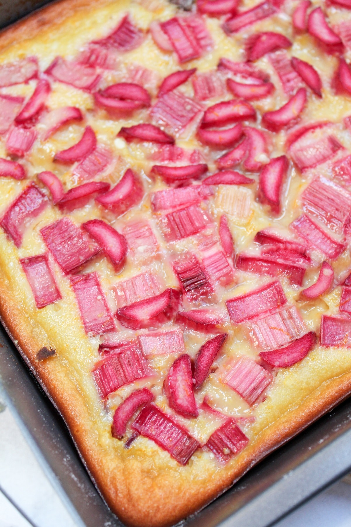 citrus rhubarb custard bars uncut in pan
