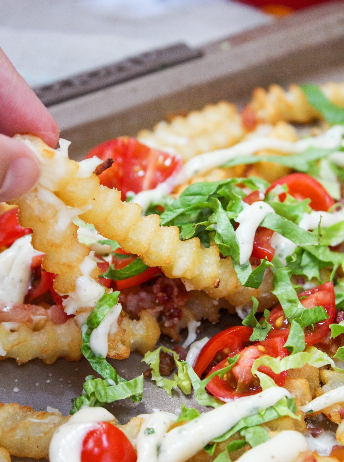 fries picked up with toppings