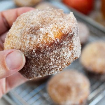 apple cider doughnuts muffin held in hand
